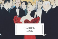 rose-dior-636x422