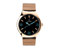Wanted ! La Mesh de Toywatch