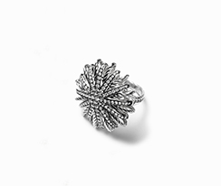 Wanted ! Une bague David Yurman