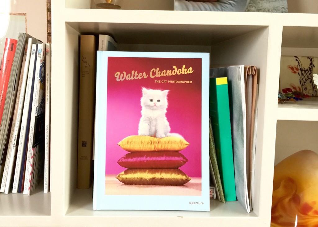 #Wishlist : un livre dédié aux chats
