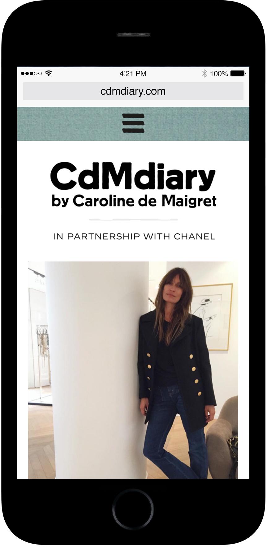 CDM DIARY CARTON MAGAZINE